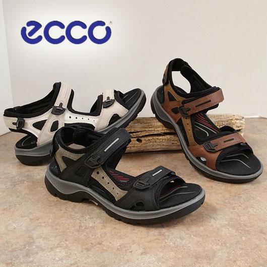 Browns Shoe Store Longmont Co